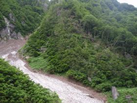 ホウ雪崩の痕跡