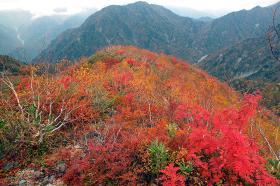 黒部別山とハシゴ谷
