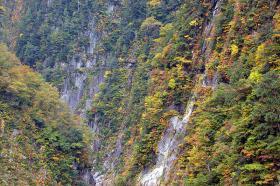 登山道に秋の訪れ(S字峡~半月沢)