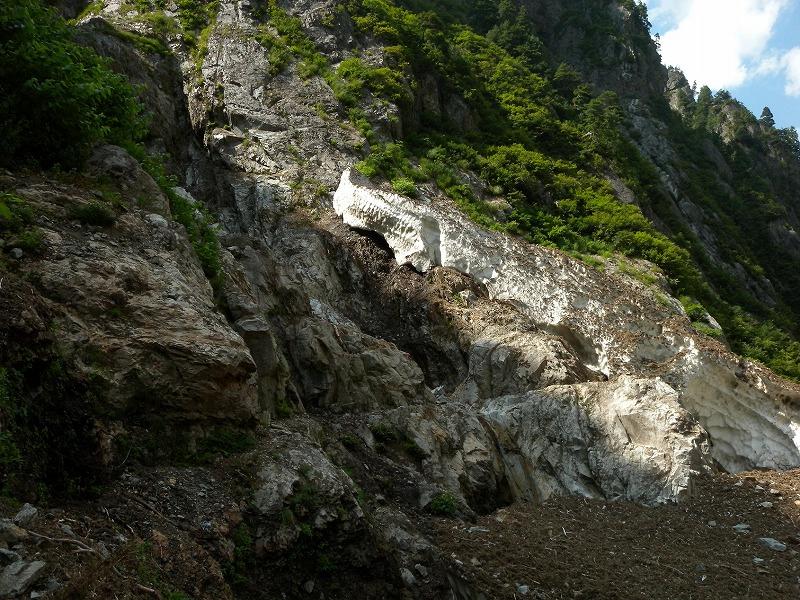 写真:sinkosi250819-1.jpg