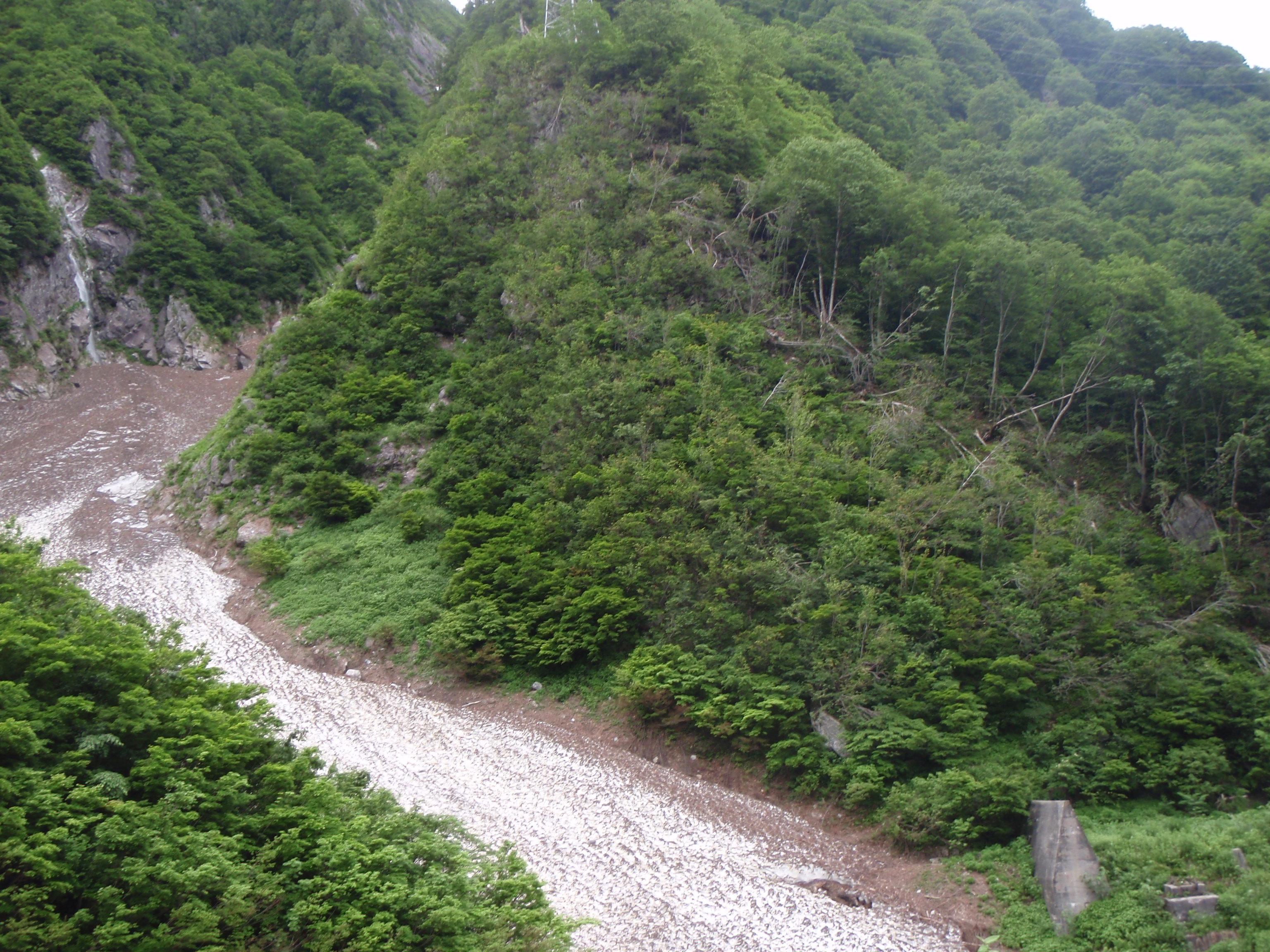 写真:ホウ雪崩の痕跡