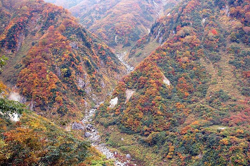写真:仙人温泉上流架橋部