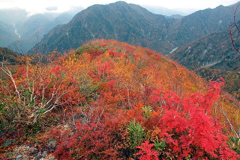 写真:黒部別山とハシゴ谷