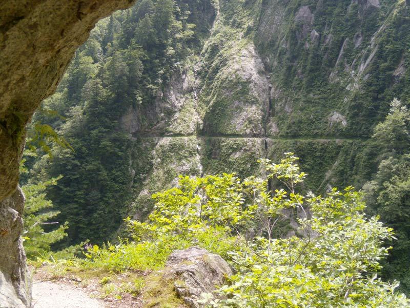 写真:志合谷を挟み、左岸を望む!